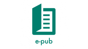 2022 Health Equity Standards and Guidelines (epub)
